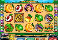 Big Kahuna - Snakes & Ladders Screenshot 1