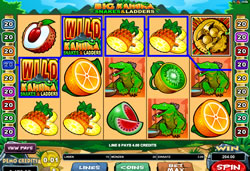 Big Kahuna - Snakes & Ladders Screenshot 10