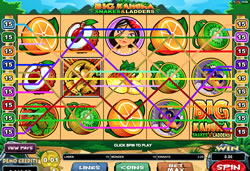 Big Kahuna - Snakes & Ladders Screenshot 6