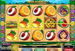 Big Kahuna - Snakes & Ladders Screenshot 9