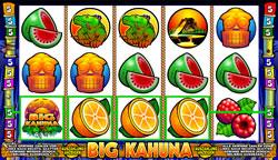 Big Kahuna Screenshot 5