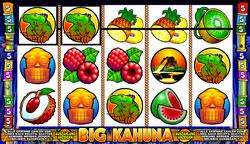 Big Kahuna Screenshot 6
