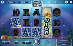 Dolphins Luck Screenshot 14