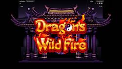 Dragons Wild Fire Screenshot 11