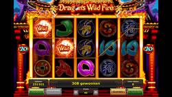 Dragons Wild Fire Screenshot 8