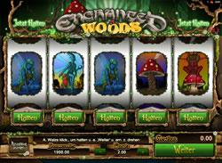 Enchanted Woods Screenshot 1