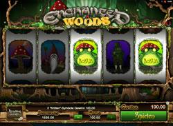 Enchanted Woods Screenshot 6