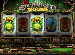 Enchanted Woods Screenshot 8