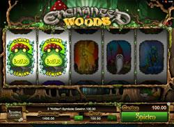Enchanted Woods Screenshot 9