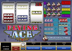 Flying Ace Screenshot 1
