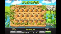 Frog Princess Screenshot 12