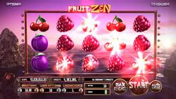 Fruit Zen Screenshot 7