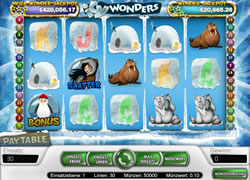 Icy Wonders Screenshot 1