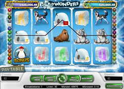 Icy Wonders Screenshot 5
