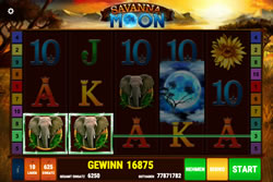 Savanna Moon Screenshot 6