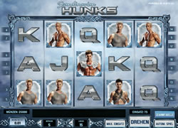 Scandinavian Hunks Screenshot 1