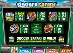 Soccer Safari Screenshot 5