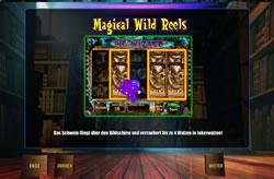 The Pig Wizard Screenshot 3