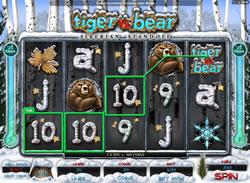 Tiger vs Bear Screenshot 1