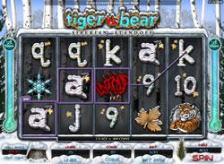 Tiger vs Bear Screenshot 5