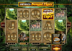 Untamed Bengal Tiger Screenshot 2