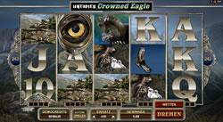 Untamed Crowned Eagle Screenshot 8