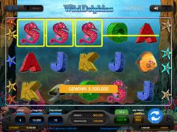 Wild Dolphins Screenshot 11