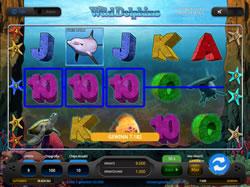 Wild Dolphins Screenshot 12
