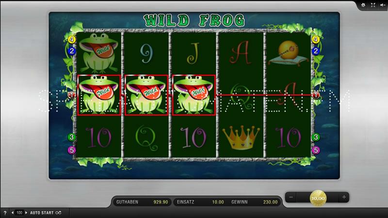 wild frog spielen