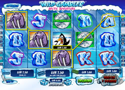 Wild Gambler 2 Screenshot 2