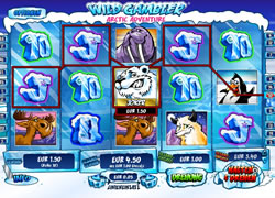 Wild Gambler 2 Screenshot 6