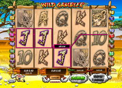 Wild Gambler Screenshot 4