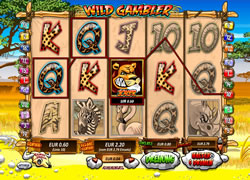 Wild Gambler Screenshot 5