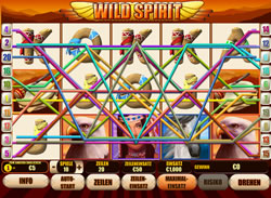 Wild Spirit Screenshot 2