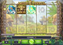 Wild Turkey Screenshot 2