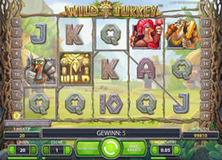 Wild Turkey Screenshot 4