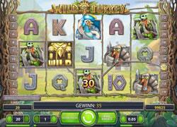 Wild Turkey Screenshot 5