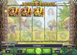 Wild Turkey Screenshot 6